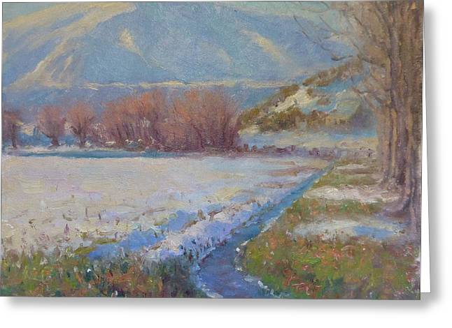 Terry Perham Greeting Cards - Dalefield. Queenstown NZ. Greeting Card by Terry Perham
