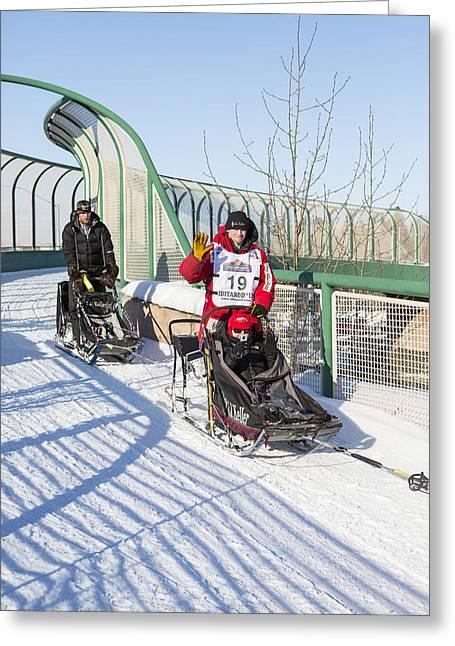 Dog Sled Racing Greeting Cards - Dallas Seavey Iditarod Champ Greeting Card by Tim Grams
