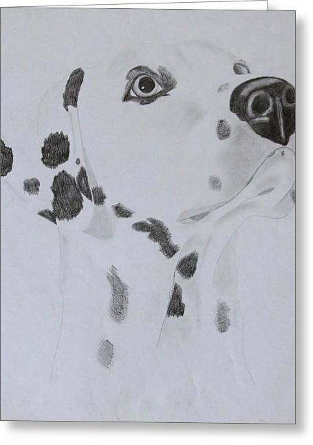 Dalmatian Greeting Card by AR Annahita