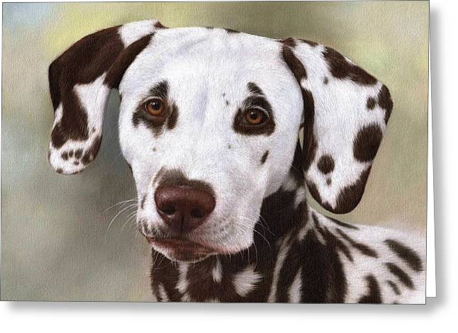 Dog Portraits Greeting Cards - Dalmatian Painting Greeting Card by Rachel Stribbling