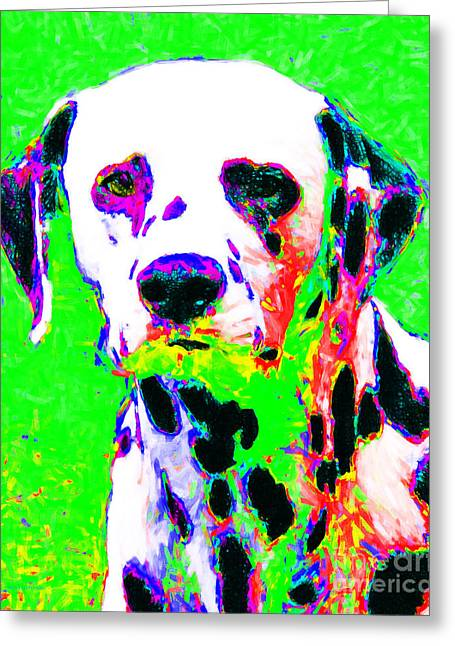 Happy Dogs Cute Dogs Greeting Cards - Dalmation Dog 20130125v3 Greeting Card by Wingsdomain Art and Photography