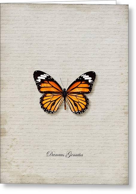 Danaus Genutia Greeting Cards - Danaus Genutia Butterfly Greeting Card by Lee Craggs