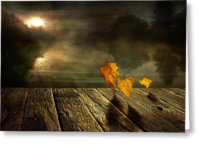Autumn Digital Greeting Cards - Dance to the sun Greeting Card by Veikko Suikkanen