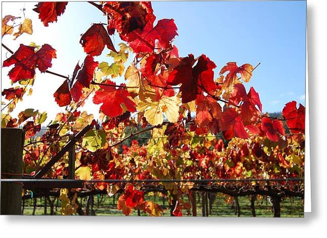 Winery Photography Greeting Cards - Dancing Fire Greeting Card by Wei Zhang