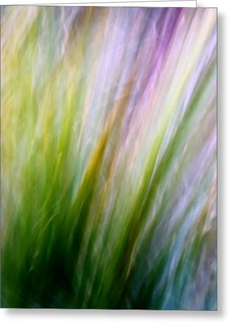 Dancing Grass Greeting Card by Mah FineArt