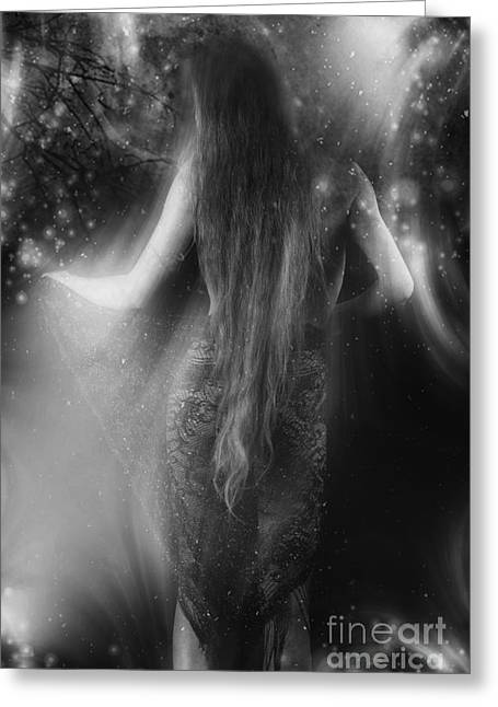 Photoart Greeting Cards - Dancing in the Moonlight... Greeting Card by Nina Stavlund