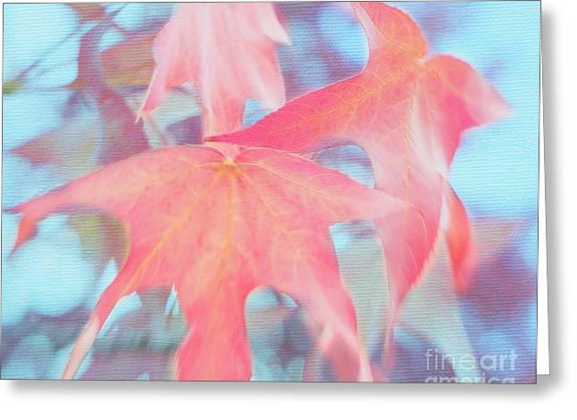 Tangerine Greeting Cards - Dancing Leaves Greeting Card by Irina Wardas