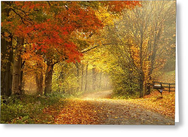 Dirt Road Greeting Cards - Dancing Leaves Greeting Card by Magda  Bognar