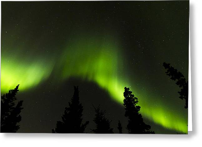 Nature Center Greeting Cards - Dancing Lights Greeting Card by Kyle Lavey