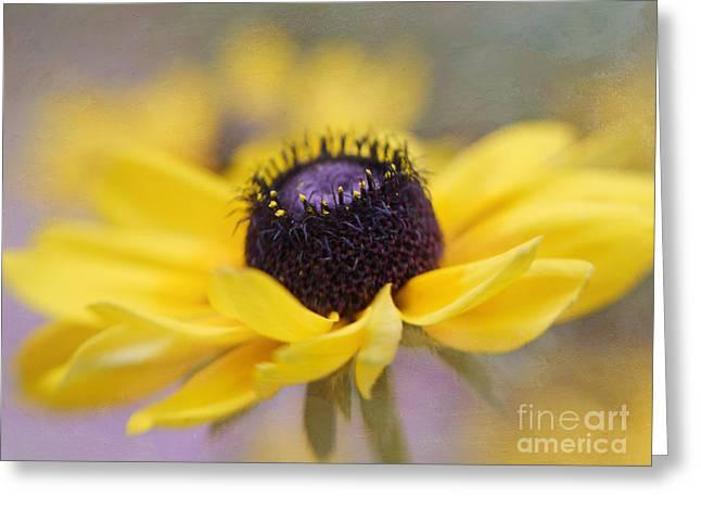 Yellow Coneflower Greeting Cards - Dancing Mood Greeting Card by Irina Wardas