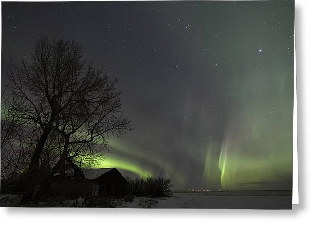 Northernlights Greeting Cards - Dancing Sky Greeting Card by Laurence Appaix