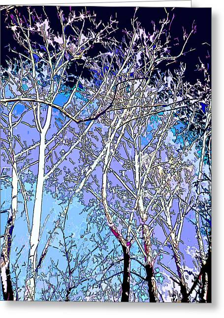 Dancing Sycamore Trees Image Greeting Card by Paul Price