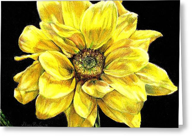 Daylight Drawings Greeting Cards - Dancing Yellow Daisy Greeting Card by Shana Rowe