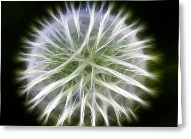 Omaste Witkowski Greeting Cards - Dandelion Abstract Greeting Card by Omaste Witkowski