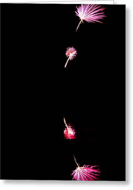 Purple Fireworks Greeting Cards - Dandelion Fireworks Greeting Card by Parker Cunningham