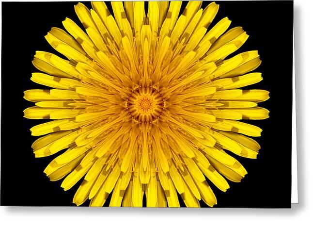 David J Bookbinder Greeting Cards - Dandelion Flower Mandala Greeting Card by David J Bookbinder