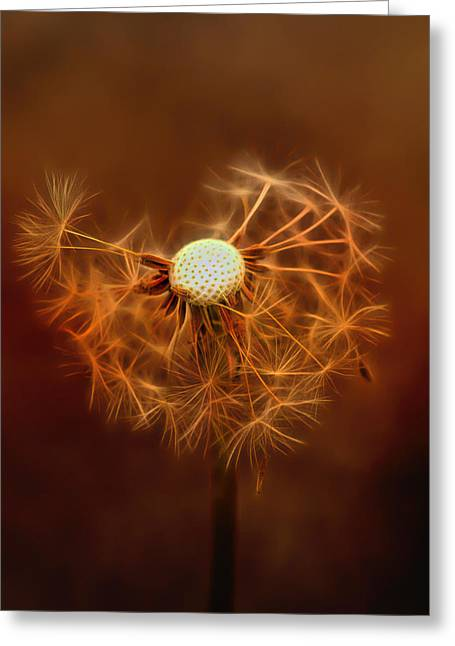 Wine Art Paining Mixed Media Greeting Cards - Dandelion Glow Greeting Card by Linda Muir