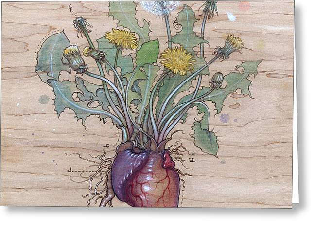 Flower Pyrography Greeting Cards - Dandelion Heart Greeting Card by Fay Helfer