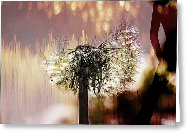 Copy Mixed Media Greeting Cards - Dandelion in summer Greeting Card by Toppart Sweden