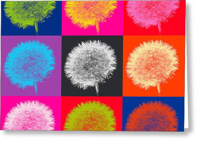 Colorful Dandelions Greeting Cards - Dandelion Pop Greeting Card by Emily Enz