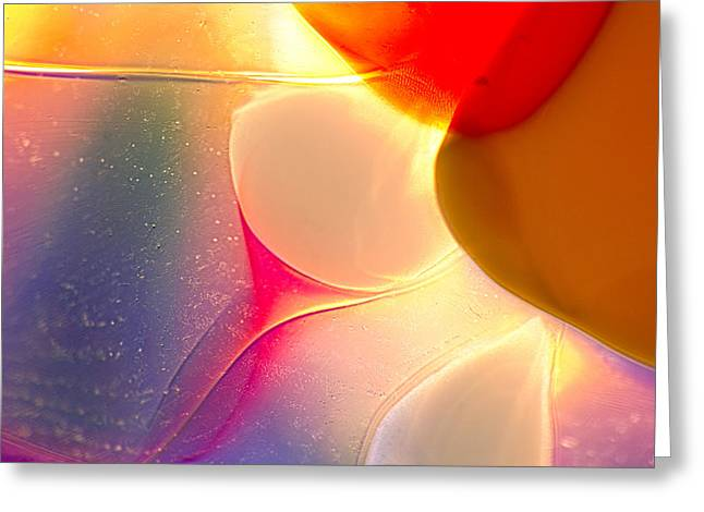 Sun Hat Glass Art Greeting Cards - Dandelions Greeting Card by Omaste Witkowski