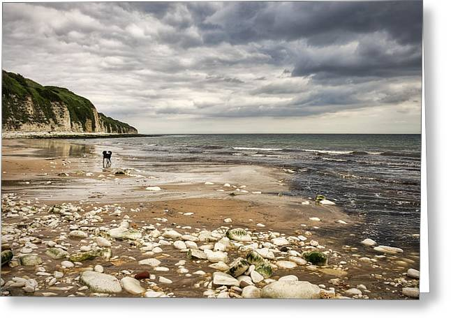 Wet Dogs Greeting Cards - Danes Dyke Greeting Card by Svetlana Sewell