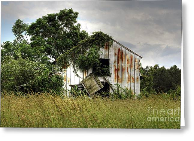 Rusty Tin Roof Greeting Cards - Dangling Barn Door Greeting Card by Benanne Stiens