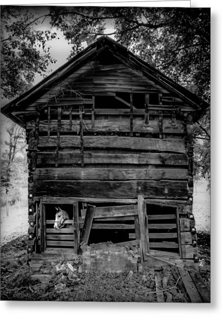 Daniel Boone Cabin Greeting Card by Karen Wiles