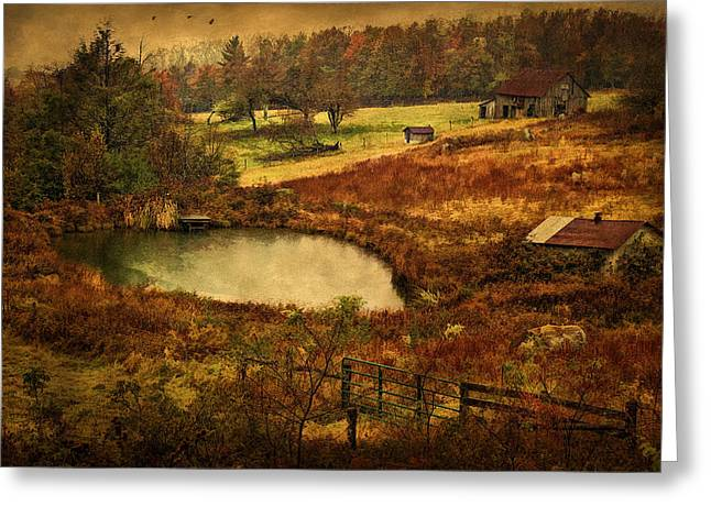 Old Barns Greeting Cards - Danville Pike Farm Greeting Card by Priscilla Burgers