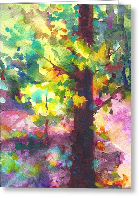 Abstract Movement Greeting Cards - Dappled - light through tree canopy Greeting Card by Talya Johnson