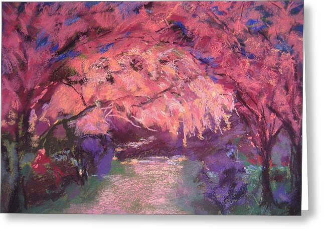 Cherry Blossoms Pastels Greeting Cards - Dark Blossom Greeting Card by Jennifer Robin