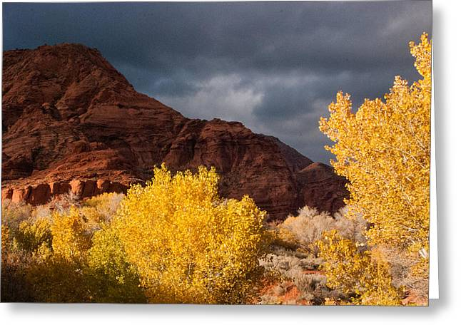 Geobob Greeting Cards - Dark Clouds and Red Cliffs National Recreation Area Saint George Utah Greeting Card by Robert Ford
