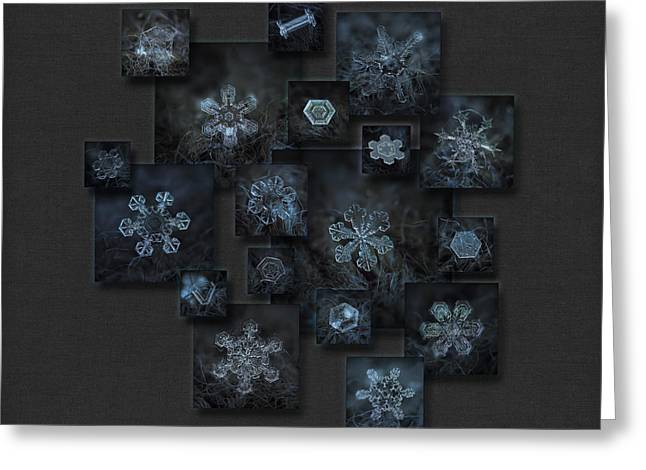 Frost Greeting Cards - Snowflake collage - Dark crystals 2012-2014 Greeting Card by Alexey Kljatov