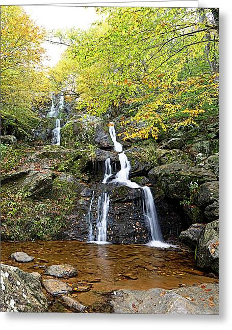 Leafs Greeting Cards - Dark Hollow Falls Greeting Card by Metro DC Photography