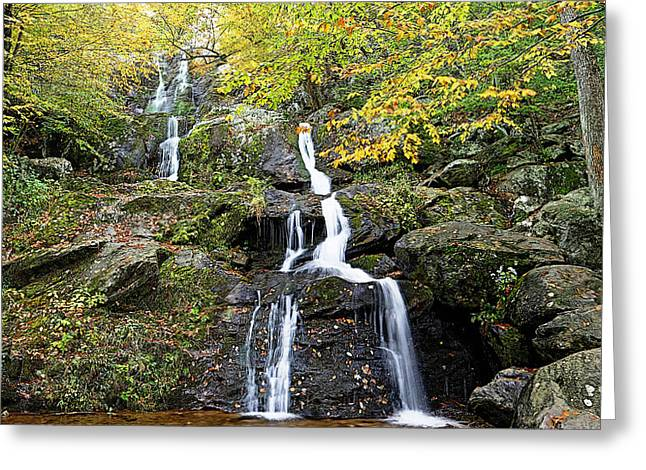 Dark Hollow Falls Greeting Card by Metro DC Photography