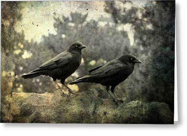 Two Crows Greeting Cards - Dark Nature Greeting Card by Gothicolors Donna Snyder