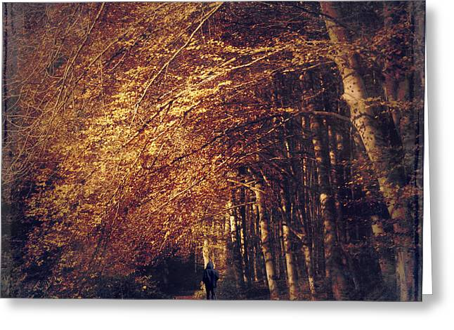 Creative Manipulation Greeting Cards - Dark Path Greeting Card by Dirk Wuestenhagen
