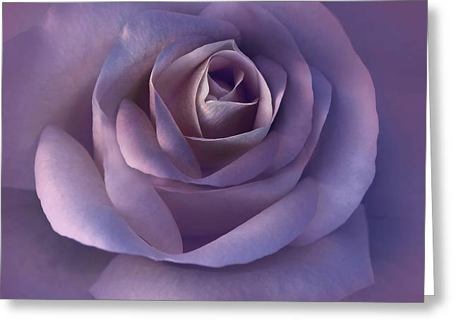 Purple Roses Greeting Cards - Dark Plum Rose Flower Greeting Card by Jennie Marie Schell