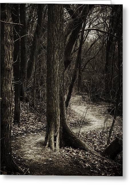 Damp Greeting Cards - Dark Winding Path Greeting Card by Scott Norris