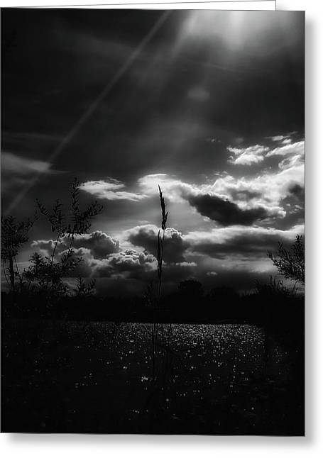 White Decor Posters Greeting Cards - Darkest Before The Dawn Greeting Card by Donna Blackhall