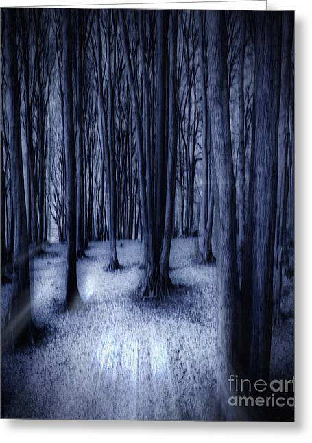 Wintry Greeting Cards - Darkness Awakened Greeting Card by Edmund Nagele