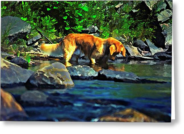 Retriever Prints Digital Art Greeting Cards - Darn Fishies Greeting Card by Steve Harrington