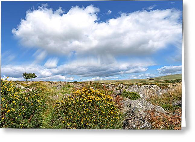 Green And Yellow Greeting Cards - Dartmoor Panoramic Greeting Card by Gill Billington