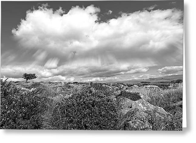 Gills Rock Greeting Cards - Dartmoor Panoramic in Black and White Greeting Card by Gill Billington