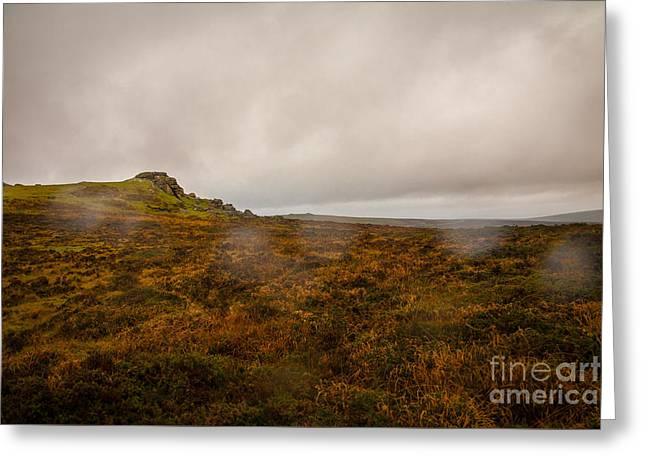 Heathland Greeting Cards - Dartmoor Rain Greeting Card by Jan Bickerton