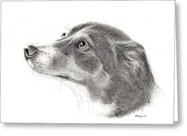 Mary Mayes Greeting Cards - Dash Greeting Card by Mary Mayes