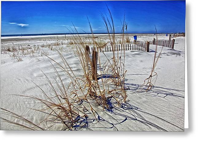 Ocean Vistas Greeting Cards - Dauphin Island Beach Greeting Card by Mountain Dreams
