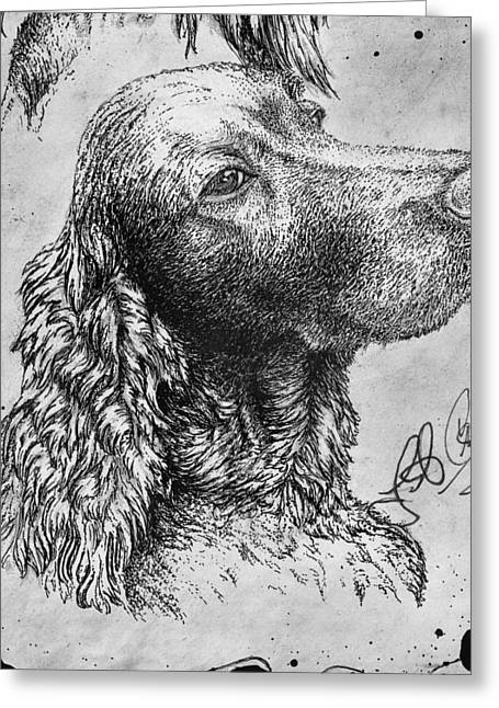 Pencil Drawings Of Pets Greeting Cards - Dave   Greeting Card by Jac  Jac