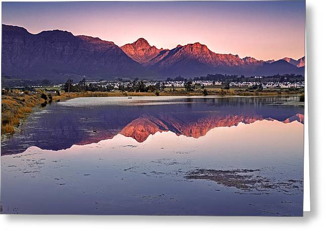 Stellenbosch Photographs Greeting Cards - Daves Back Yard Greeting Card by Andrew Harvard