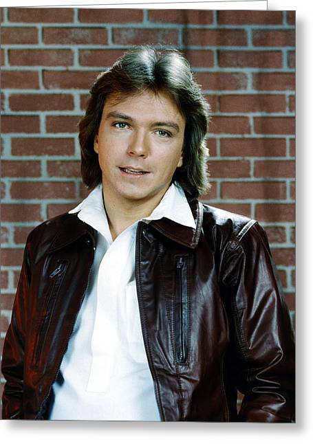 David Greeting Cards - David Cassidy Greeting Card by Silver Screen